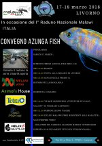 Raduno Malawi Italia.JPG